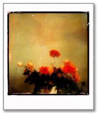 fotokunst til salgs