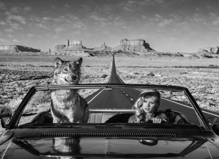 David Yarrow - Road Trip