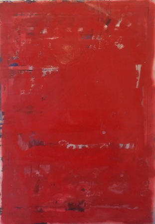 Nicolay Aamodt - Red II