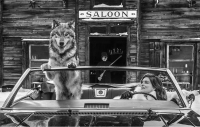 David Yarrow - Cindy's shotgun wedding