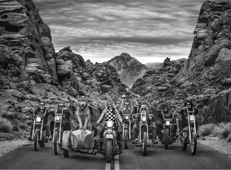 David Yarrow - The leader of the pack