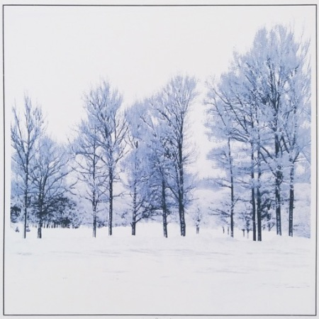Kirsti Aasheim - Winter Beauty