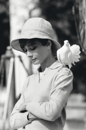 Terry O'Neill - Audrey Hepburn With Dove (40
