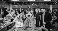 David Yarrow - The Wolves of Wall Street 2
