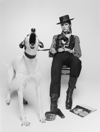 "Terry O'Neill - David Bowie, Diamond Dogs view 2 (20"" x 16"")"