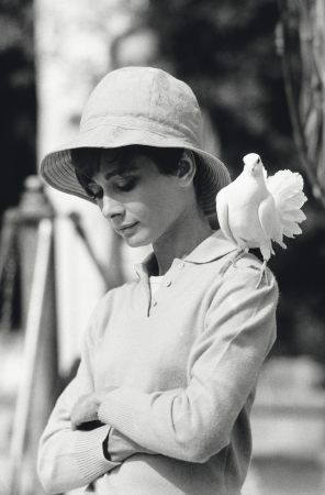 "Terry O'Neill - Audrey Hepburn With Dove (30"" x 40"")"