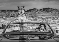 David Yarrow - The Richest Hill In The World