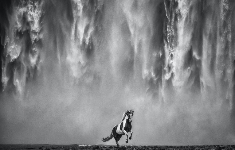 David Yarrow - Legends of the fall