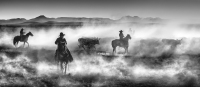 David Yarrow - Drovers