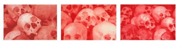 Morten Viskum - Killing Fields I-III, red